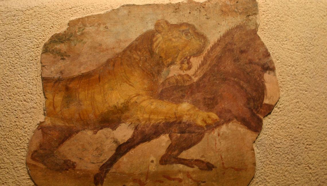 Imagen de una tigresa, en el Museo Nacional de Arte Romano de Mérida