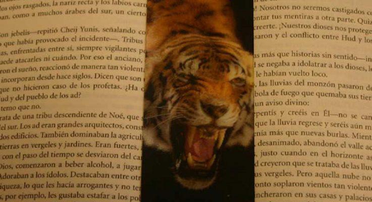 ImageManager para el Tigre