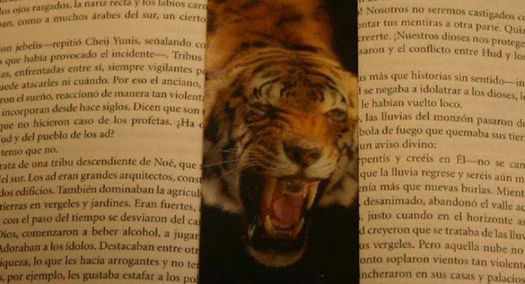 Punto de lectura con Tigre