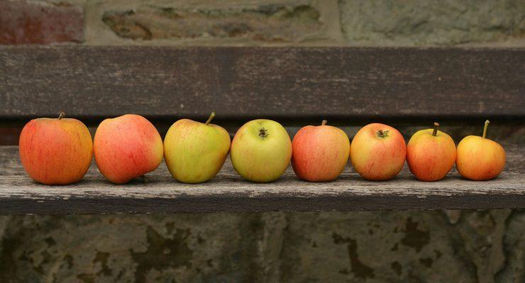 Serie de manzanas