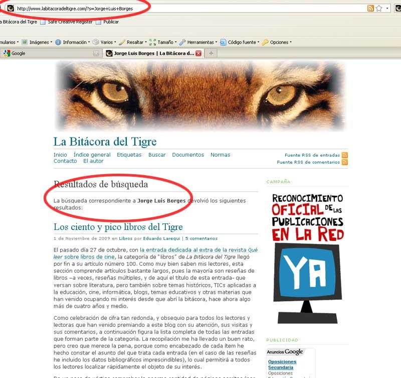 Figura 5 - Resultado de la búsqueda en el navegador