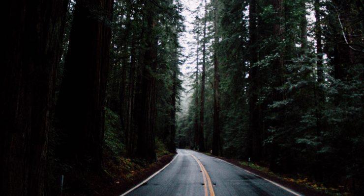 Carretera oscura