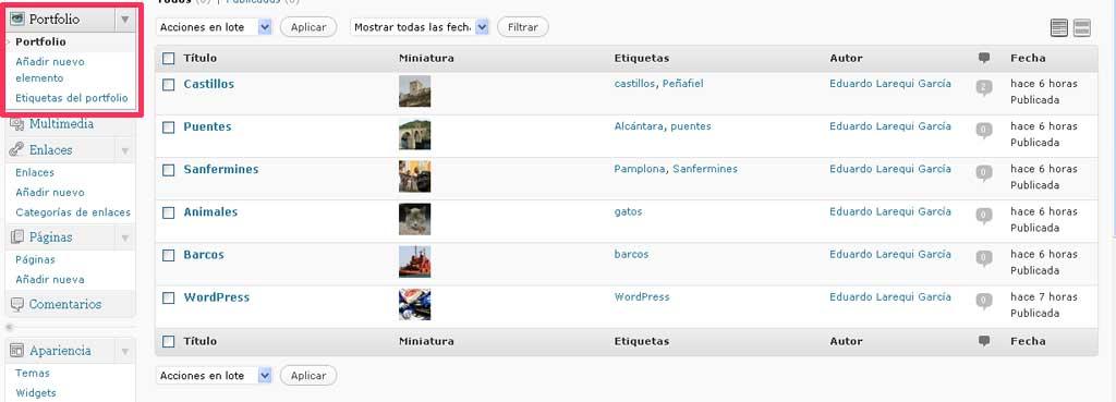 Figura 1 - Menú de portfolio y elementos correspondientes a dicho tipo de contenido