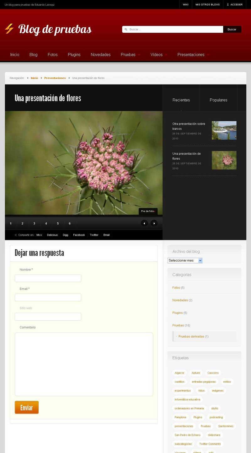 Figura 3 - Tema News, tipo de contenido personalizado (presentación)