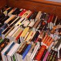 Los libros por el suel
