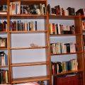 La biblioteca, en proceso de ordenación