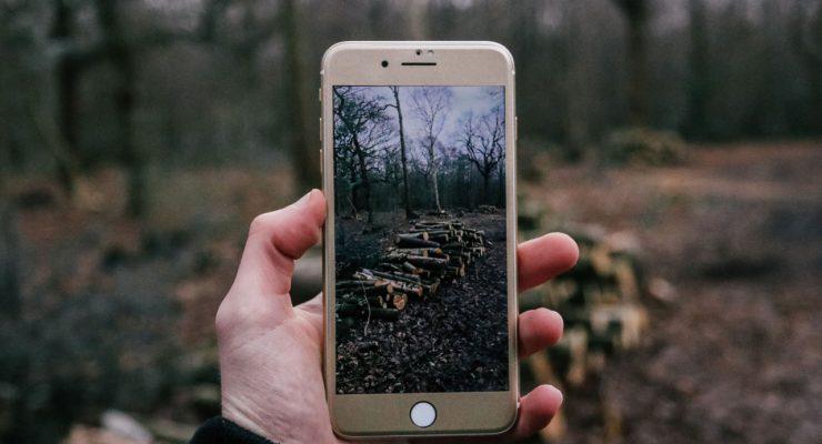 Imagen en un teléfono móvil