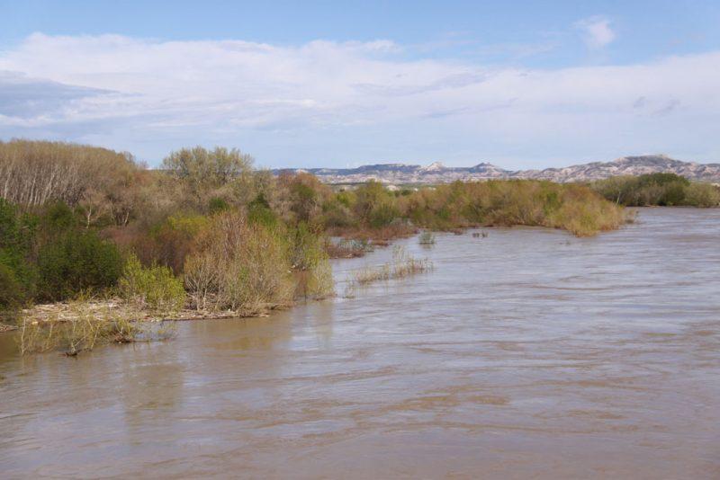 El Ebro, desbordado, entre Ribaforada y Fustiñana 1