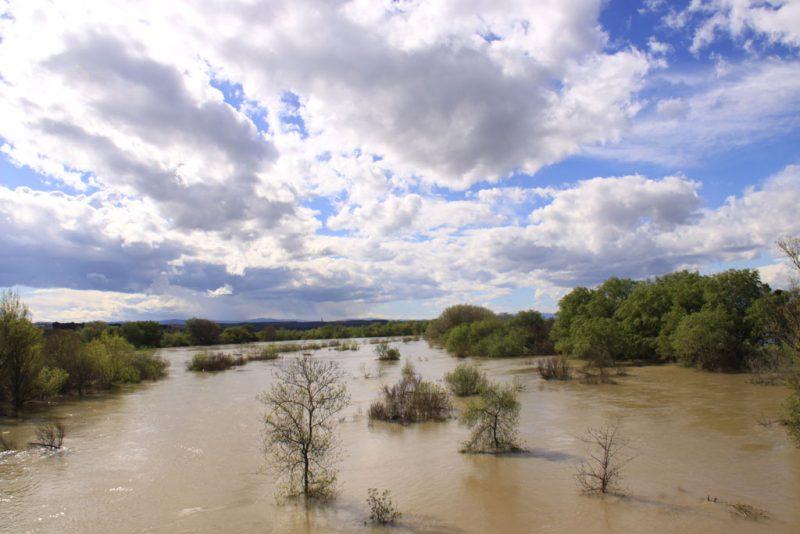 El Ebro, desbordado, entre Ribaforada y Fustiñana 3