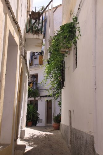 Rincones de Dalt Vila (la ciudad vieja) 3