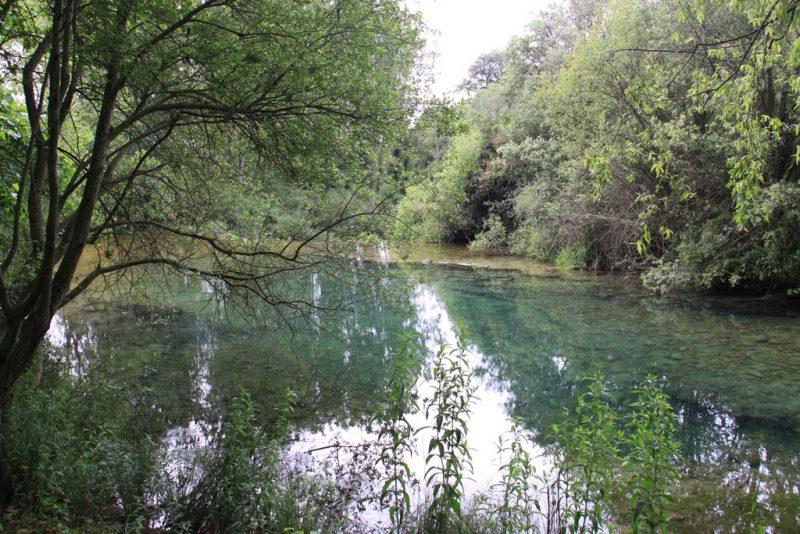 Represa y estanque sobre el río Ubagua, cerca de Riezu 2