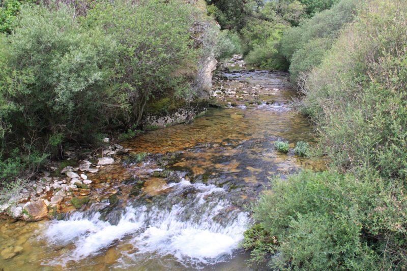 El río Ubagua