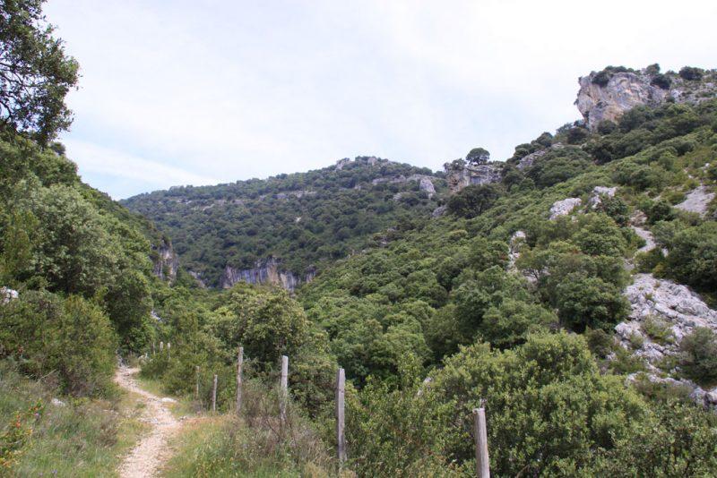 Vista del camino por el cañón del río Ubagua