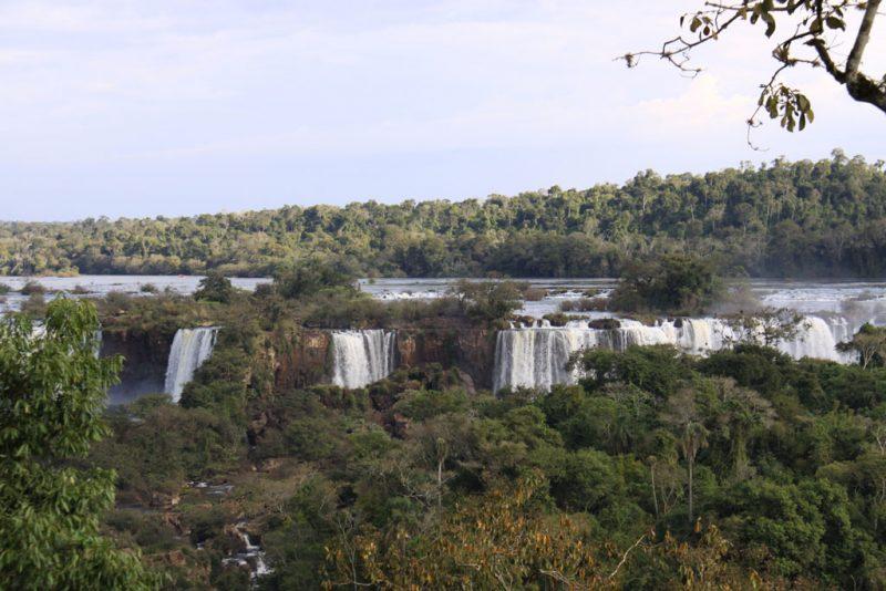 Selva del Iguazú y saltos argentinos