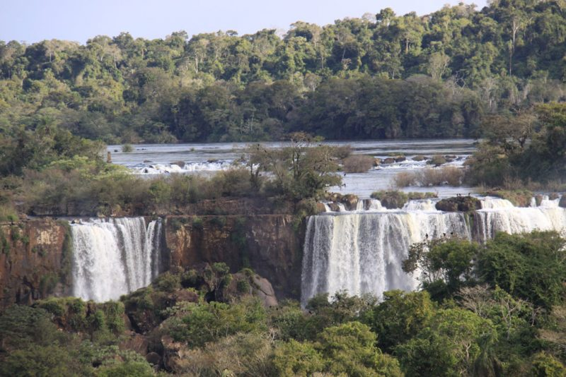 Saltos argentinos y selva del Iguazú. Se aprecian las perchas de los zopilotes