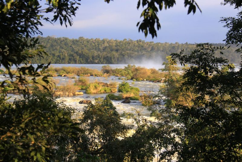 La selva del Iguazú, al atardecer