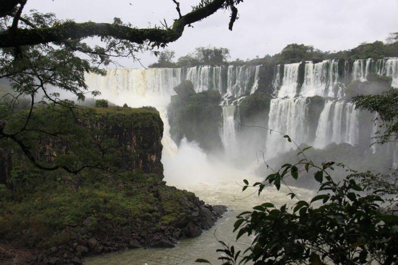 La selva y las cascadas 3